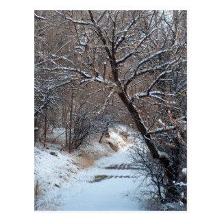 Snowy-Weg-Winter-Foto-Postkarte Postkarten