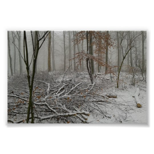 Snowy Winter Forest Poster