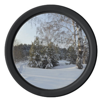 Snowy-Winter-Tag Poker Chips