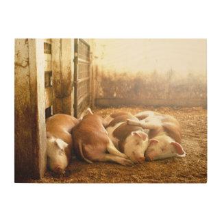 Snuggling Schweine Getty Bild-| Holzwanddeko
