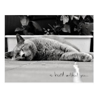 So gebohrt… - Postkarte