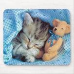 Sogar Kätzchen-Liebe-Teddy-Bären Mousepad