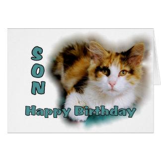 Sohn-alles- Gute zum Geburtstagkaliko-Katzen-Karte Karte