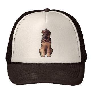 Sojabohnenöl-UNO cachorrito Kultcaps