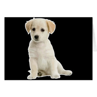 Sojabohnenöl-UNO cachorrito Grußkarten
