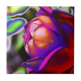 Solarized Rose durch Shirley Taylor Keramikfliese