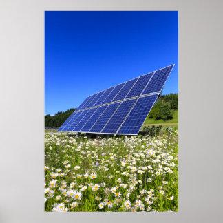 Solarplatten-grüne Wiesen-nachhaltige Energie Poster