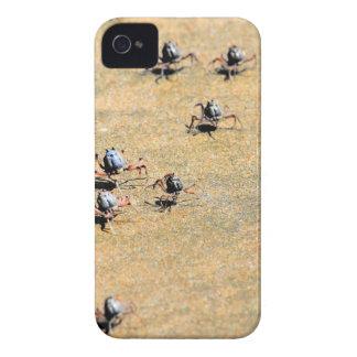 SOLDAT-KRABBEN AUF STRAND QUEENSLAND AUSTRALIEN iPhone 4 COVER