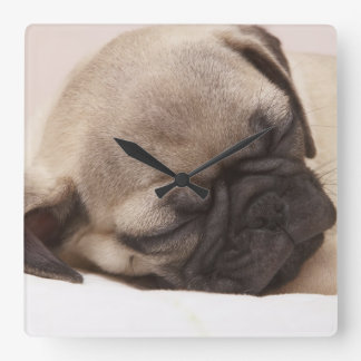 Solid schlafender Welpe Quadratische Wanduhr