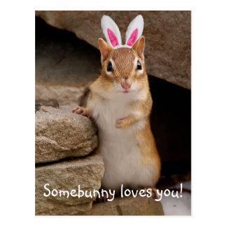 Somebunny Lieben Sie Chipmunk Postkarte
