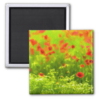 Sommer-Gefühle - wunderbare Mohnblumen-Blumen I Quadratischer Magnet