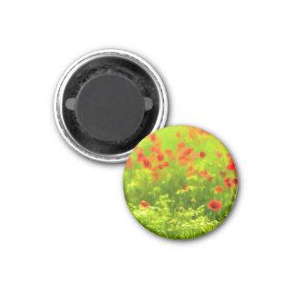 Sommer-Gefühle - wunderbare Mohnblumen-Blumen I Runder Magnet 3,2 Cm