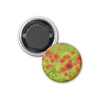 Sommer-Gefühle - wunderbare Mohnblumen-Blumen III Runder Magnet 3,2 Cm