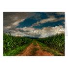 Sommer-Getreidefeld-freier Raum Notecard Karte