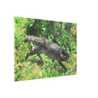 Sommer-grauer Wolf-Tier-Kunst-Leinwand Leinwanddruck