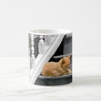 Sommer-Katzen-Nickerchen Kaffeetasse
