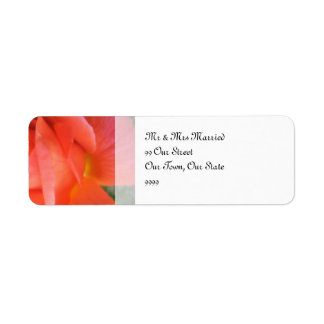 Sommer-Rosen-Hochzeit Rücksendeetikett