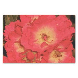 Sommer-Rosen-Seidenpapier Seidenpapier