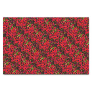 Sommer-Rot-Blumen Seidenpapier