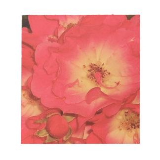 Sommer-Rote Rosen Notizblock