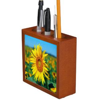 Sommer-Sonnenblumen Stifthalter