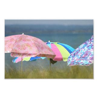 Sommer-Träumerei Fotografischer Druck