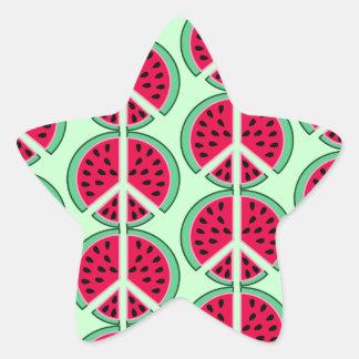 Sommer-Wassermelone Stern-Aufkleber