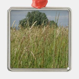 Sommerlandschaft des wilden Feldes. Toskana, Quadratisches Silberfarbenes Ornament