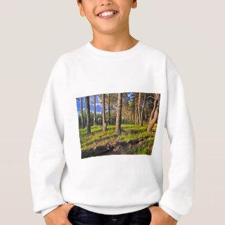 Sommerwald im Abendlicht Sweatshirt
