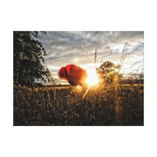 Sommerzeit-Mohnblume Leinwanddruck