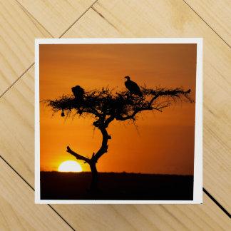 Sonnenaufgang am Masai Mara, Kenia Weinbox