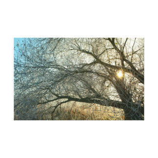 Sonnenaufgang an der Havel. Leinwanddruck
