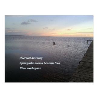 Sonnenaufgang-Flug Postkarte