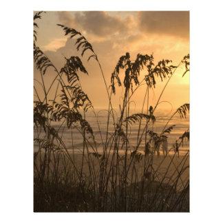 Sonnenaufgang Flyerbedruckung