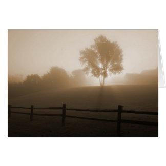 Sonnenaufgang im Nebel Karte