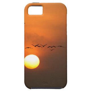 Sonnenaufgang mit Mengen der Fliegenkräne iPhone 5 Cover