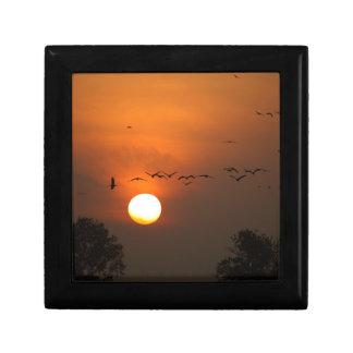 Sonnenaufgang mit Mengen der Fliegenkräne Schmuckschachtel