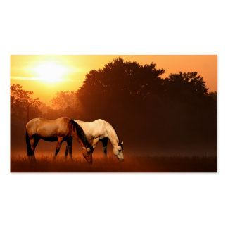 Sonnenaufgangpferde