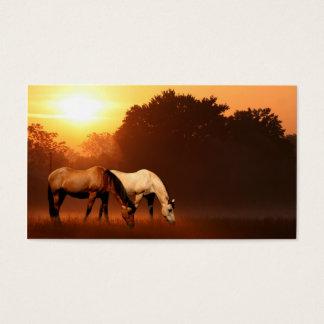 Sonnenaufgangpferde Visitenkarten