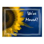 Sonnenblume auf blauer Adressenänderung Postkarte