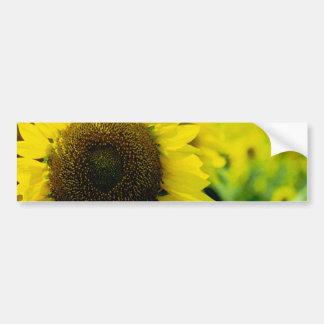 Sonnenblume Autoaufkleber