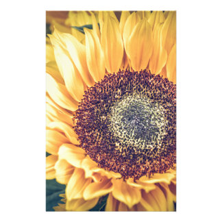 Sonnenblume Briefpapier