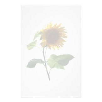 Sonnenblume, die unten schaut briefpapier