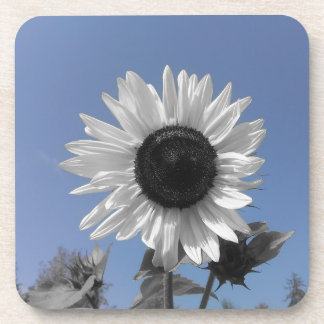 Sonnenblume-Farbspritzen Getränkeuntersetzer
