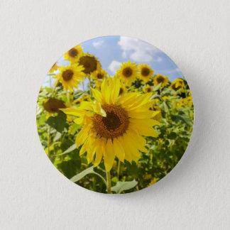 Sonnenblume-Feld-Knopf Runder Button 5,7 Cm