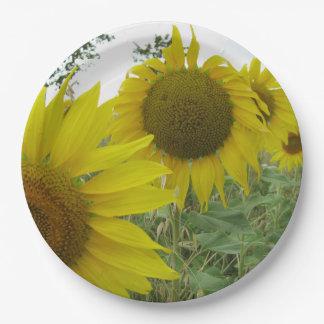 Sonnenblume-Foto-kundenspezifischer PapierTeller 9