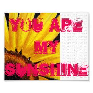 Sonnenblume-Fotodruck Fotodrucke