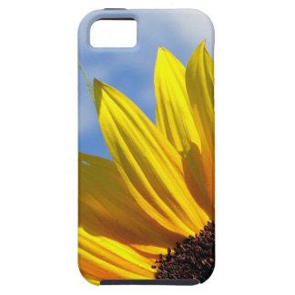 Sonnenblume iPhone 5 Hüllen