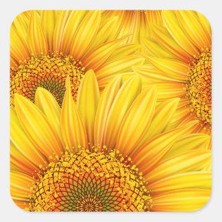 Sonnenblume-Hintergrund-Aufkleber Quadratischer Aufkleber