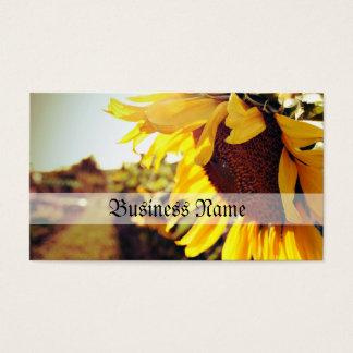Sonnenblume in der Sonne Visitenkarte
